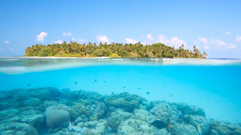 Islas maldivas un para so que puede desaparecer foto for Mejores islas de maldivas