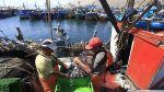 Industriales podrán pescar anchoveta desde la milla 5 en el sur - Noticias de cinco millas
