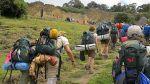 Conoce los 5 tours en áreas naturales que sorprenderán este año - Noticias de pastoruri
