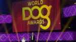 World Dog Awards, el 'Óscar' de los perros actores de Hollywood - Noticias de premio luces