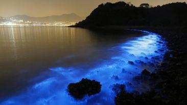El hermoso y peligroso brillo de las aguas de Hong Kong