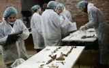 España: Inicia extracción de restos de la tumba de Cervantes