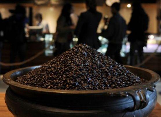 Descubren en el café proteína con efecto similar a la morfina
