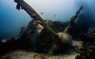 Conoce Chuuk y su enorme flota sumergida de barcos japoneses