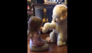 Facebook: niña enseñó a perro a saludar correctamente (VIDEO)