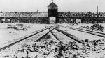 El primer hombre que entró a Auschwitz tras su liberación - Noticias de comida alemana