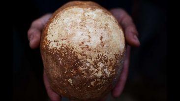 Cráneo sugiere que Homo sapiens pudo encontrarse con Neandertal