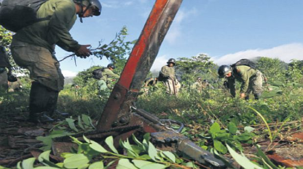 El Estado no ha reducido el espacio de coca ilegal en el Vraem