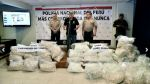 Decomisan más de una tonelada de droga en Ayacucho y Cusco - Noticias de general pnp