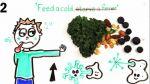 YouTube: conoce los alimentos efectivos para curar la gripe - Noticias de autismo