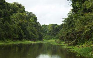 Reserva Pacaya Samiria recibe reconocimiento internacional