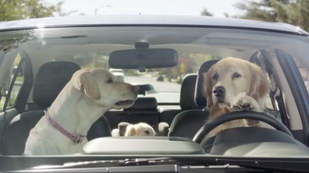 Resultado de imagen para conduciendo vehiculos