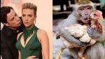 Twitter: memes por beso de John Travolta a Scarlett Johansson - Noticias de john travolta