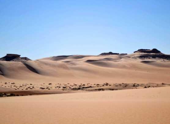 La Amazonía necesita del desierto Sahara para sobrevivir