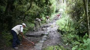 Camino inca hacia Machu Picchu luce así tras mantenimiento