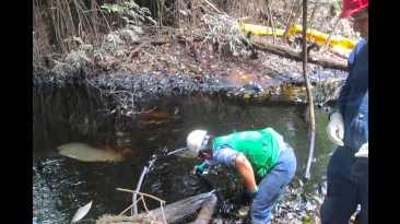 Derrame de petróleo en Loreto: esta es la zona afectada (FOTOS)