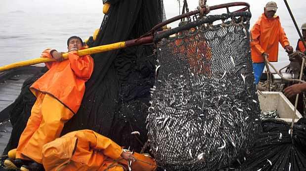 Resultado de imagen para la pesca en el peru