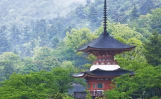 """Japón crea el """"consejo ninja"""" para impulsar el turismo"""