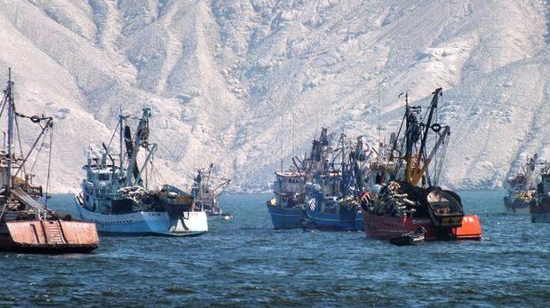 Pesca: ¿fallo de Suprema impactaría en pesca de consumo humano?