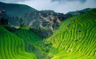 En este hermoso lugar de China se cultiva arroz