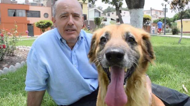 Facebook: piden 80 mil firmas para penar el maltrato animal