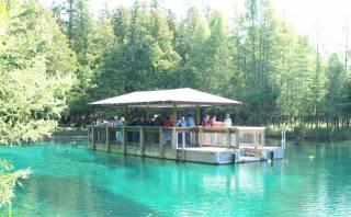 Los peces parecen levitar en este lago casi transparente