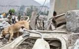 Huaicos que llegaron a Huarochirí dañaron más de 200 viviendas