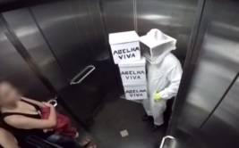 YouTube: ¿te imaginas estar dentro de ascensor lleno de abejas?