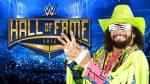 YouTube: los miembros del Salón de la Fama de WWE clase 2015 - Noticias de randy savage