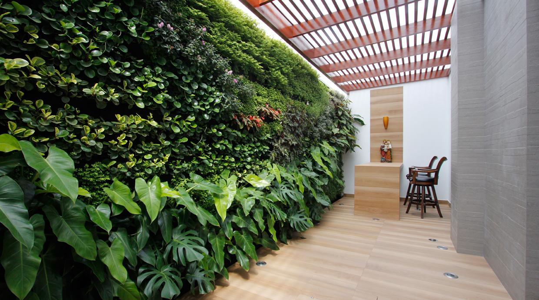 aprende a integrar tus plantas en jardines verticales