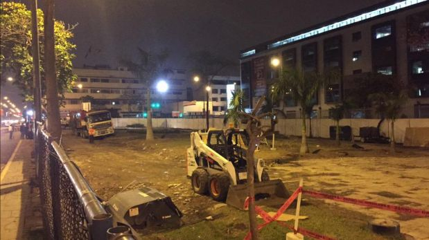 El retiro de palmeras ocurrió en la madrugada, según denuncia de colectivo