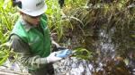 Juzgado aprueba difundir informe sobre 92 sitios contaminados - Noticias de loreto