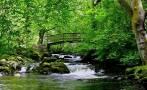 Vea la cascada irlandesa que ayuda a los insomnes [VIDEO]