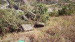 Áncash: caída de bus a abismo deja seis personas fallecidas - Noticias de accidentes en carreteras