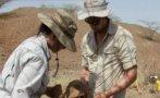 Primeras herramientas pueden tener 3,3 millones de años