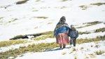 Heladas se intensificarán en siete regiones del sur del país - Noticias de martin bonshoms