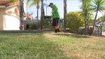 Estados Unidos: Pintar el césped para tener jardines verdes - Noticias de modas