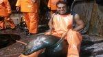 Pescador compartió fotos en la que maltrata a lobo marino - Noticias de