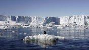 Advierten incremento del derretimiento de hielo en la Antártica