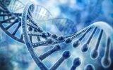 Elaboran el primer mapa genético del cáncer de próstata