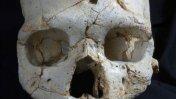 El primer asesinato de la historia fue hace 430 mil años