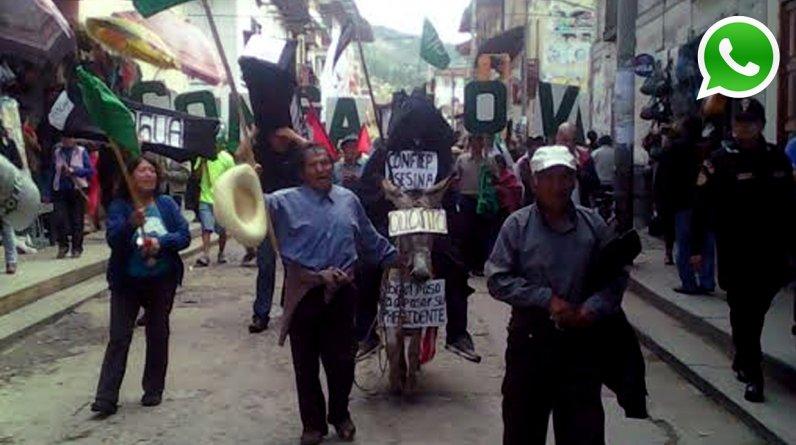 """Manifestantes en Cajamarca hicieron pasear un """"burrito"""" con carteles y una persona encima, para mostrar su rechazo al proyecto minero Tía María y su apoyo a Arequipa. (Foto: WhatsApp/Moisés Sangay)"""
