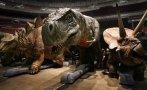 Estudio sugiere que los dinosaurios eran de sangre caliente