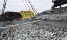 Adex: Exportación pesquera se vio afectada por el clima
