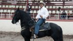 """""""El Bronco"""", la gran sorpresa de las elecciones en México - Noticias de elecciones municipales 2014"""