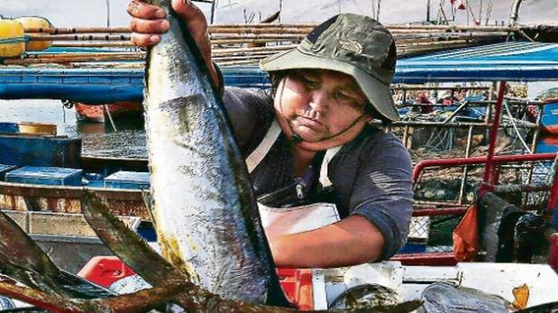 La pesca significará la mitad del crecimiento del PBI de abril
