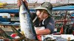La pesca significará la mitad del crecimiento del PBI de abril - Noticias de pesca de anchoveta