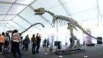 """""""Dinosaurios gigantes"""" prevén lograr 150 mil visitas en un mes - Noticias de nickelodeon"""