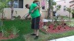 En California pintan los jardines de verde por culpa de sequía - Noticias de mundo jaime gonzalez