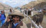 Crecimiento en líneas móviles se da en provincias y no en Lima